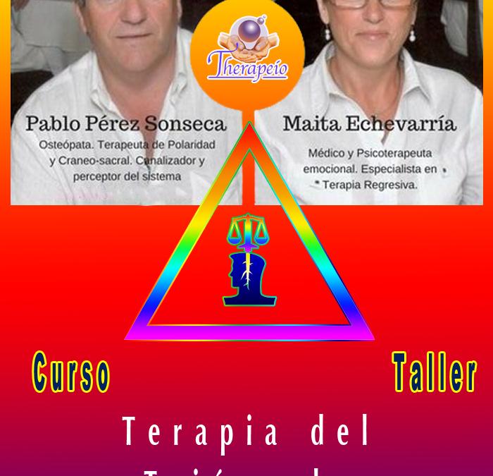Curso-Taller 9 y 10 de Febrero **Terapia del Triángulo Neuroenergético**